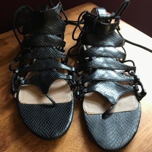 Zara Collection Leather Gladiator Lace Up Sandals